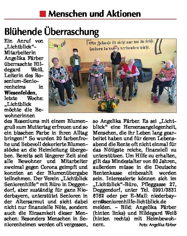 10.05.2021 | Straubinger Tagblatt | Blühende Überraschung